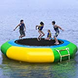 Inflatable Water Bouncer Trampoline for Adults and Kids Summer Swimming Pool Lake Sea Water Activities Games (10Ft)