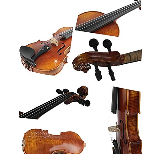 D Z Strad Violin LC101 with case, shoulder rest, bow, and rosin (1/2 - Half Size)