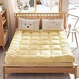 YLCJ Colchones de futón Antideslizantes Gruesos portátiles, colchón de Tatami de futón Suave Plegable al Aire Libre para el hogar, colchón de 135x200 cm (53x79 Pulgadas)