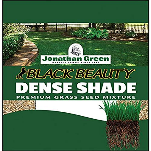Jonathan Green 10622 Dense Shade Grass Seed Mix, 1 Pounds