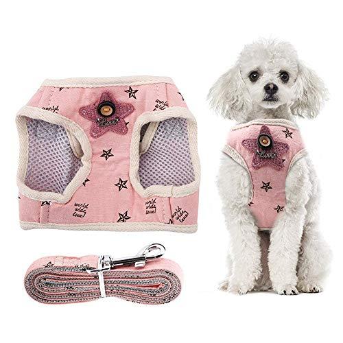 Semme Arnés de Seguridad para Perro, Correa de Pecho para Mascotas, Mezcla de algodón Transpirable, Chaleco para Perro o Gato con Correa para el Pecho con Cuerda para Tirar