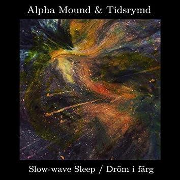 Slow-wave Sleep / Dröm i färg