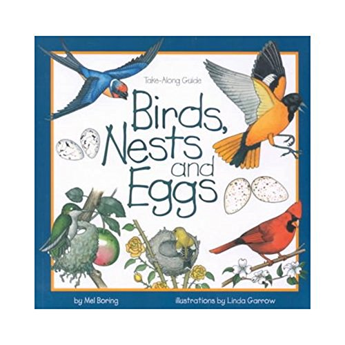 Birds, Nests & Eggs (Take Along Guides)