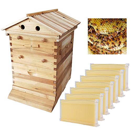 Auto Honey Hive Beehive Frames + Beekeeping Wooden House Beehive Boxes -7Pcs Auto Beehive Frame Comb...