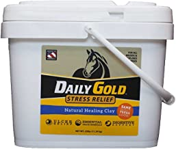 Best horse of gold Reviews