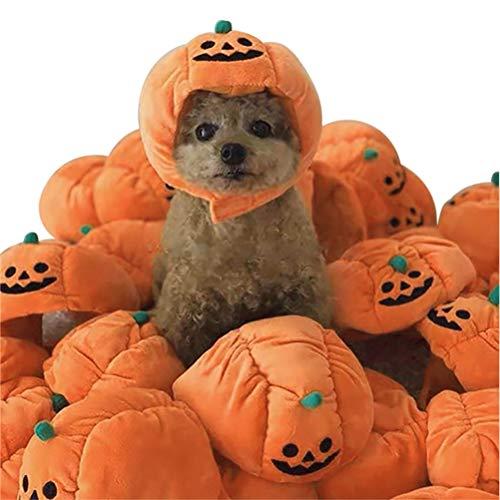 taianle Haustier Halloween Kostüm - 1 Stück Haustier Hund/Katze Kürbis Kopfbedeckung Plüsch Hut Haustier Phantasie Halloween Kostüm Zubehör Kopfschmuck für Katzen Und Kleine Hunde