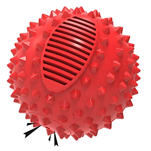 PETIZER Squeaky Dog Ball Toy for Aggressive Chewers