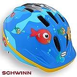 Schwinn - Vélo pour Enfant - Vélo - Scooter - Patinage - Casque de sécurité - Couleur - Bleu avec Motif Poisson (2 Ans et Plus)