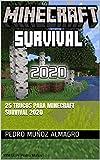 25 trucos para MINECRAFT SURVIVAL 2020: (PARTE I) (JUEGOS ON LINE)