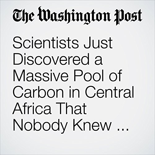 Scientists Just Discovered a Massive Pool of Carbon in Central Africa That Nobody Knew Was There copertina