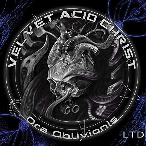 Velvet Acid Christ
