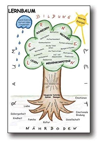 Lernbaum: Poster mit Informationen
