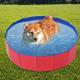 Runningfish Faltbares Haustier-Badebecken, Kunststoff-Außenkiddie-Baby-Hundebad-Haustier-Schwimmbad für Haustiere Hunde Katzen-Baden, 23.62X7.87IN