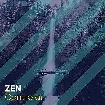 # 1 Album: Zen Controlar