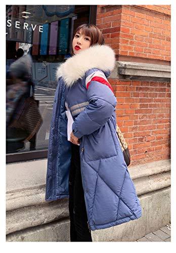 WFSDKN dames Parka 2019 nieuwe winterjas lang deel van hoge kwaliteit losse wilde ins mantel bontkraag capuchon jas