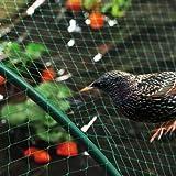 2 Filet Protection Oiseaux Fruit Potager Jardin Vert 4mx5m