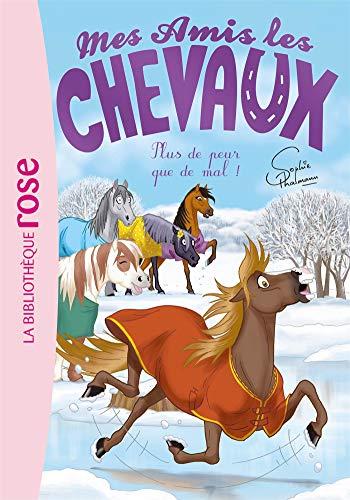 Mes amis les chevaux, Tome 29 : La blessure de Zéphyr