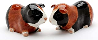 Cosmos Gifts 20745 Guinea Pig Salt and Pepper Shaker, Red