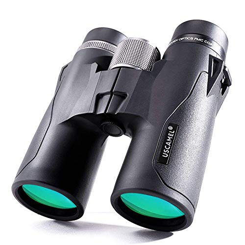 10x42 Binoculares compactos Gafas de visión Nocturna infrarroja HD con Poca luz para observación de Aves, Caza, Senderismo, Viajes, Deporte con Lente BAK4 Prism FMC para Adultos,Negro