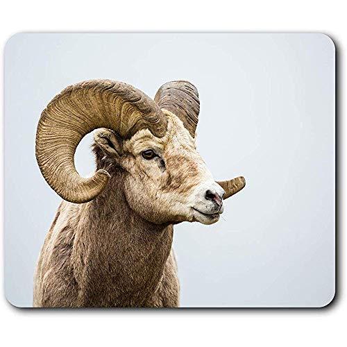 Komfortable Mausunterlage - Wilde Big Horned Sheep-Tierhörner für Computer & Laptop, Büro, Geschenk, rutschfeste Unterlage