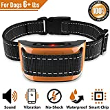 Best Dog Bark Controls - NPS No Shock Bark Collar for Small to Review