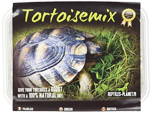 REPTILES PLANET Nourriture pour Tortue terrestre Tortoise Mix Graines à Germer -
