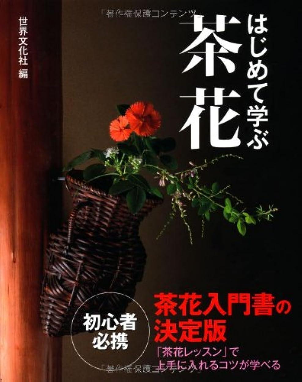 カストディアン豆腐スノーケルはじめて学ぶ茶花