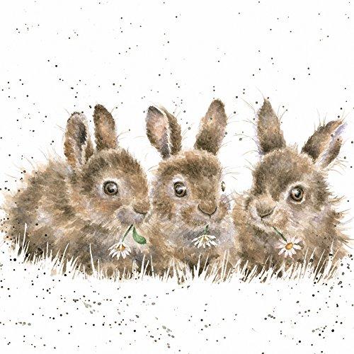 Grußkarte WRE2479, Innenseite unbedruckt, mit künsterlischem Kaninchen-Motiv der Country-Kollektion von Hannah Dale
