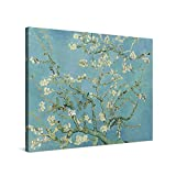 PICANOVA – Vincent Van Gogh Almond Blossom 80x60cm – Cuadro sobre Lienzo – Impresión En Lienzo Montado sobre Marco De Madera (2cm) – Disponible En Varios Tamaños