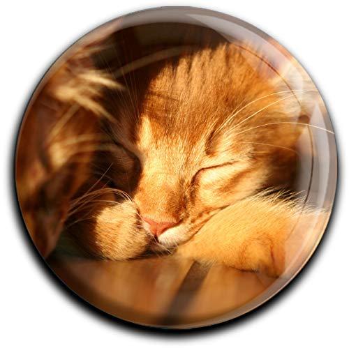 metALUm runder Acrylmagnet mit starkem Neodym - Magnet Katze #1301035
