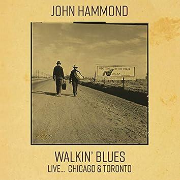 Walkin' Blues Live... Chicago & Toronto