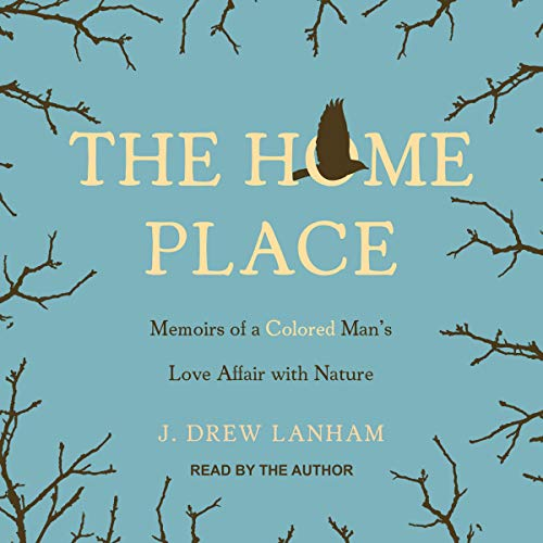 The Home Place audiobook cover art