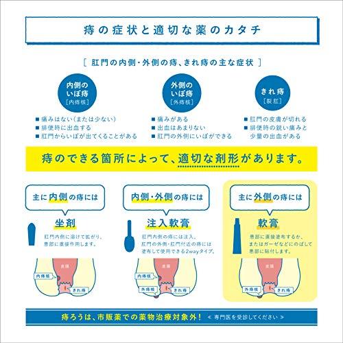 【指定第2類医薬品】ボラギノールA軟膏20g