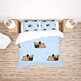 Find Sun Bedding Sets Queen Size Cute French Bulldog Sleeping Duvet Cover Set with 1 Duvet Cover and 2 Pillow Shams,Gifts for Girls Boys Teen,Without Comforter