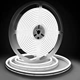 Led Neon Rope Light Dimmable 12V 6000K White Led Strip Lights with Remote,Lamomo 16.4 Ft/5m IP68 Waterproof Silicone Rope Light for Indoor/Outdoors Home Decoration/DIY(Power Accessory Include)