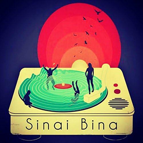 Sinai Bina