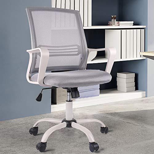 SMUGDESK Ergonomic Swivel Chair