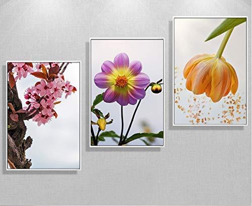 Nuevo melocotón chino 3 piezas decoración de pinturas de flores para la cabecera de la cama pinturas de lienzo arte de pared sin marco 60x80cmx3pcs