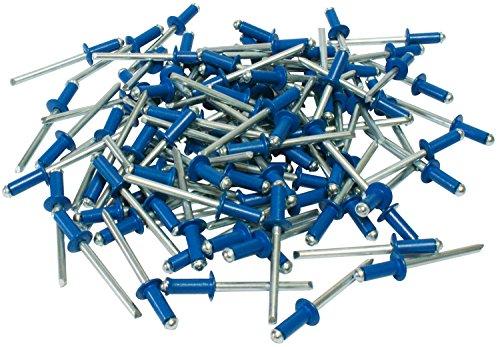 Cora 000116015 Kit de 100 rivets de fixation pour plaque d'immatriculation, Bleu