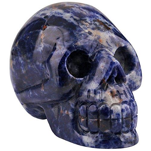 rockcloud Healing Crystal Stone Human Reiki Skull Figurine Statue Sculptures Sodalite 3'