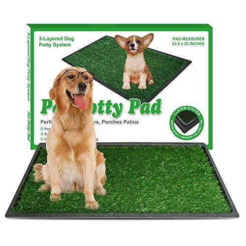 """KZNANZN Dog Grass Pad with Tray,Artificial Turf Pet Pee Grass Mat,Washable Professional Large Dog Training Grass Mat,3-Layer System Dog Toilet Grass Potty for Indoor and Outdoor-(35""""X23 .2"""")"""