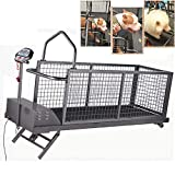 MMUY-1 Large Dog Treadmill,Collapsible Pet Fitness Treadmill with LED Display and Can Automatically Rise and...