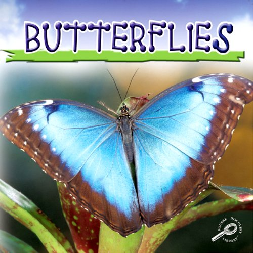 Butterflies audiobook cover art
