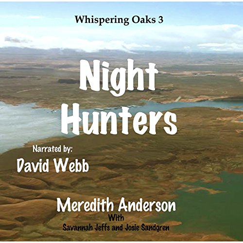 Night Hunters audiobook cover art