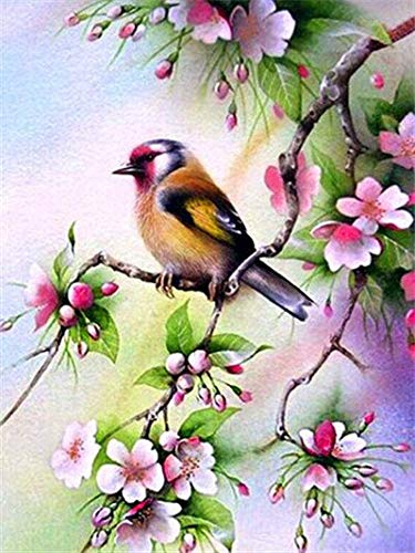 CDNY Animal pájaro-5D DIY Pintura Diamante-de Cristal, Bordado de Punto de Cruz, Lienzo-para Adultos Niños Decoración de la pared40x50cm