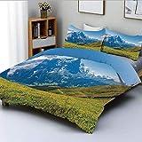 Juego de funda nórdica, picos de los Alpes suizos en un día soleado de verano, flores, valle, norte, rural, estampado, decorativo, decorativo, juego de cama de 3 piezas con 2 fundas de almohada, verde