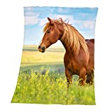 Herding YOUNG COLLECTION Fleece-Kuscheldecke, Pferde Motiv, 130 x 160 cm, Polyester