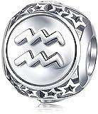 HUIQ® Zodiac Sign Charm Fit Charms Pulsera 925 Sterling Silver 12 Horoscope Constellation Charm Bead para la Pulsera Regalo de cumpleaños y Caja Envuelto-Acuario (1.20-2.18)