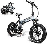 Fangfang Bicicletas Eléctricas, 20' Bicicleta eléctrica 500W Fat Tire E-Bici for Adultos, Plegable Ebikes Bicicleta con 48V 10.4AH Ocultos batería de Litio Hombres Mujeres,Bicicleta (Color : Grey)