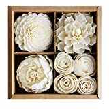 Mixed White Sola Flower with Cotton Wick Diffuser Set Replacement for Home Fragrance by Plawanature